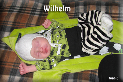 LilleWilhelm,tvåveckorgammal.