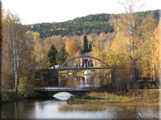 Två broar vid kyrkan med höstgult omkring.