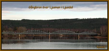 101105 Gångbron över Ljusnan i Ljusdal.