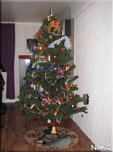 Kajsa tar en tupplur under julgranen.