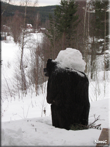 Björnen har fått ryggsäck.