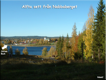 Alfta from Nabbaberget,