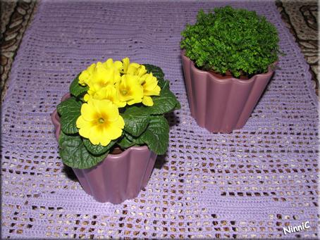 Små blommor på soffbordet.