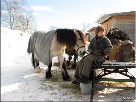 Forbonde på marknaden i Skästra.