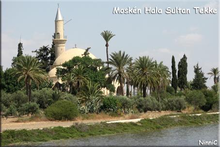 Moskén Hala Sultan Tekke.