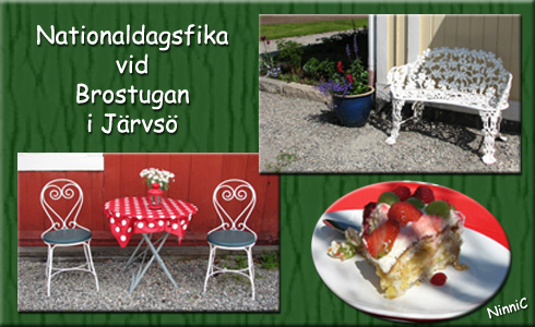 Nationaldagsfika vid Brostugan.