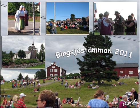 Bingsjöstämman 2011.