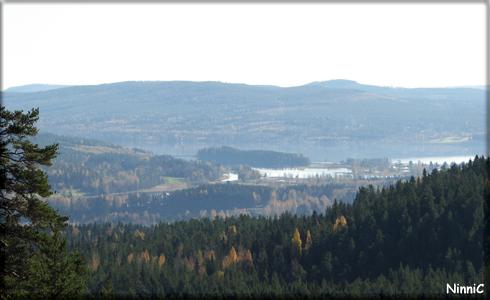 Järvzoo-utsikt.