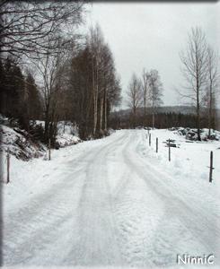 120103 Vinterväg i Storsved.