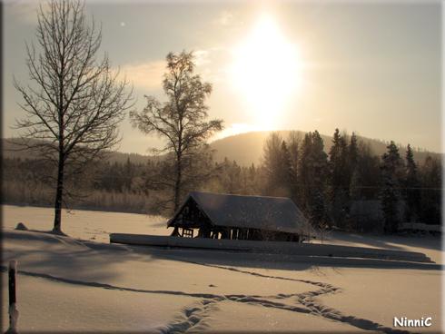 120203 Strålande sol över åkrarna i Storsved - motljusbild.