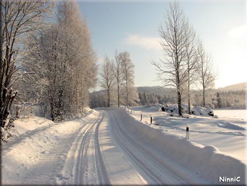 120203 Vinterväg i solsken.