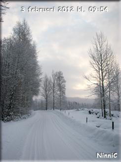 120203 Vinterväg.
