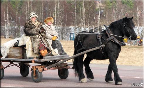 120323 Finaste hästen och enklaste ekipaget.