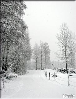 120421 ...med vinterväg och allt.