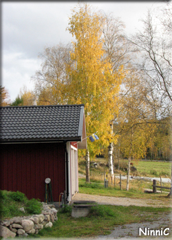 121001 Hösten.