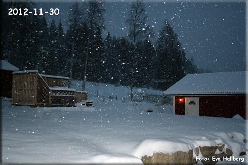 Evas bild av snön.