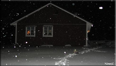 121029 Tidig vinter.