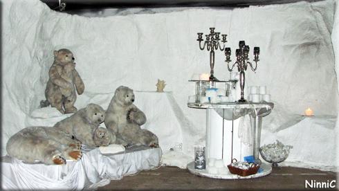 121211 Løiten Lys - Isbjörnar och vitt.