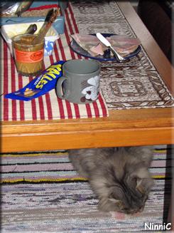 Frukost i vardagsrummet - Snoozen stal en skinkskiva.