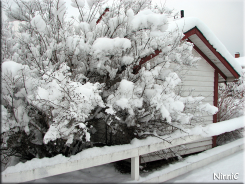 Mycket snö nu...