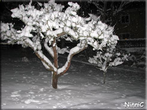 160110 Nu läll har vi fått snö