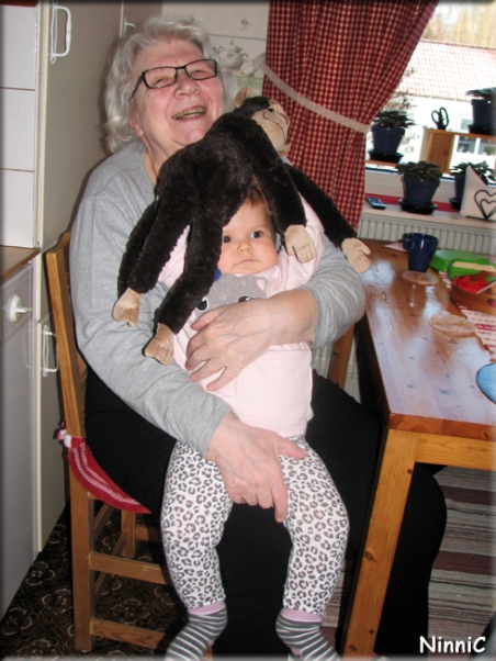 160203 Gammelmormor apan Laban och Vilja