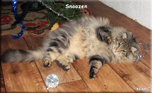 Snoozen