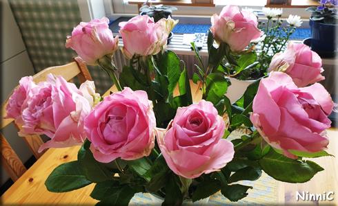 Rosor från Monnes
