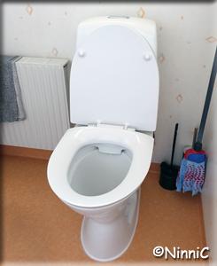 210518 Nya toastolen