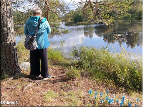 210822 Paula fotar naturen i Svabensverk.